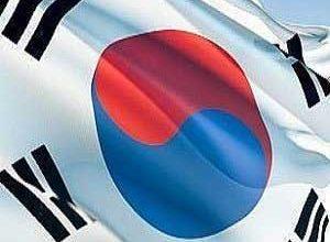 Korea10-fortnite-player