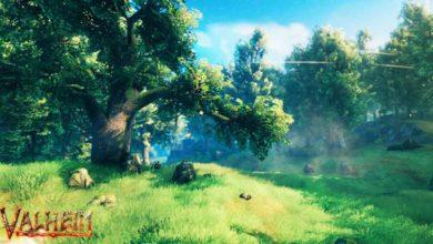 valheim meadows biome